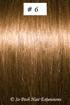 European Hair Extensions - #6 Chestnut Brown