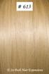 European Hair Extensions - #613 Bleached Blonde